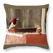 Red-headed Woodpecker Feeding Throw Pillow