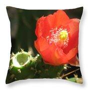 Hot Red Cactus Throw Pillow