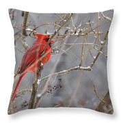 Red Hot In A Snowstorm Throw Pillow
