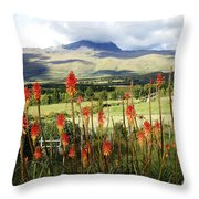 Red Hot Pokers Of The Andes Throw Pillow