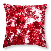 Red I Throw Pillow