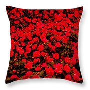 Red Impatiens Flowers Throw Pillow