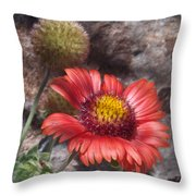 Red Indian Blanket Throw Pillow