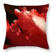 Red Kelp Throw Pillow