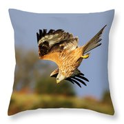 Red Kite Diving Throw Pillow
