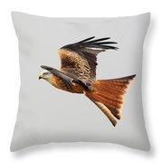 Red Kite Soaring Throw Pillow