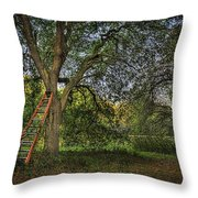 Red Ladder And Oak Throw Pillow