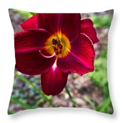 Red Lady Lily 1 Throw Pillow