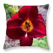Red Lady Lily 4 Throw Pillow
