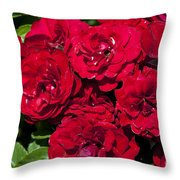 Red Lavaglut Lavaglow Floribunda Roses Throw Pillow