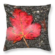 Red Leaf On Pavement Throw Pillow