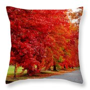 Red Leaf Road Throw Pillow