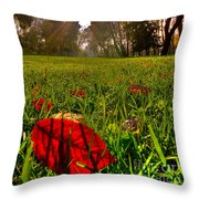 Red Leaf Under The Hot Autumn Sun  Throw Pillow