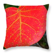 Red Leaf With Yellow Veins Throw Pillow