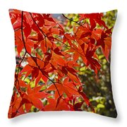 Red Leaves 1 Throw Pillow