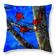 Red Leaves Blue Sky In Autumn Throw Pillow