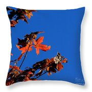 Red Leaves Blue Sky Throw Pillow