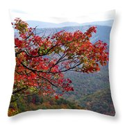 Red Leaves In The Blueridge Throw Pillow