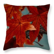 Red Leaves On The Branches In The Autumn Forest. Throw Pillow