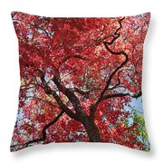 Red Leaves On Tree Throw Pillow