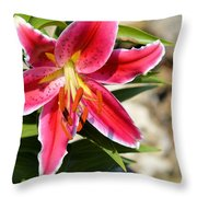 Red Lilly 8095 Throw Pillow