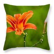 Red Lily - Featured 3 Throw Pillow