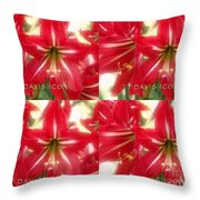 Red Lily Four Throw Pillow