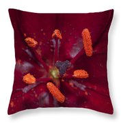Red Lily Macro Throw Pillow