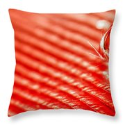 Red Lined Throw Pillow