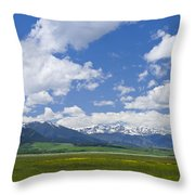 Red Lodge Spring Scene 1 Throw Pillow by Roger Snyder