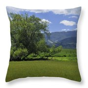 Red Lodge Spring Scene Panorama 3 Throw Pillow by Roger Snyder