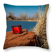 Red Lunch Bag Throw Pillow