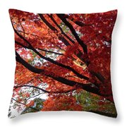 Red Maple 01 Throw Pillow