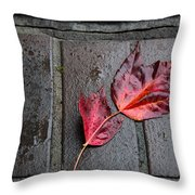 Red Maple Bricks Throw Pillow