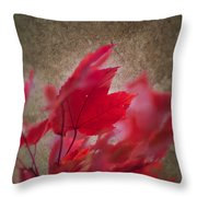 Red Maple Dreams Throw Pillow