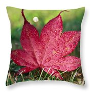 Red Maple Leaf And Dew Throw Pillow