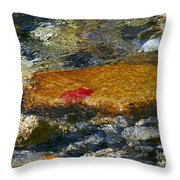 Red Maple Leaf In Stream Throw Pillow