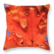 Peak Color Maple Leaves Throw Pillow