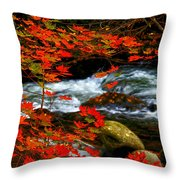 Red Maple Stream  Throw Pillow