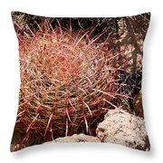 Red Mohave Barrel Cactus Throw Pillow