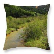 Red Mountain Creek - Colorado  Throw Pillow by Mike McGlothlen
