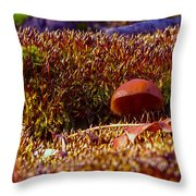 Red Mushroom Inn Throw Pillow