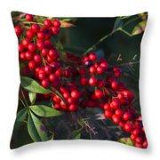 Red Nandina Berries - The Heavenly Bamboo Throw Pillow
