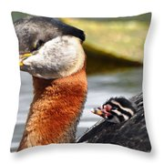 Red-necked Grebe And Chick Throw Pillow