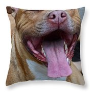 Red Nose Pit Bull Terrier Throw Pillow