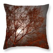 Red Oak At Sunrise Throw Pillow