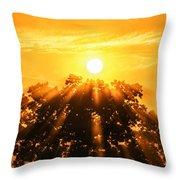 Red Oak Sunrise Fog Throw Pillow