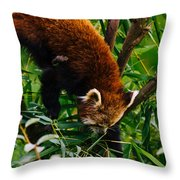 Red Panda Tree Climb Throw Pillow