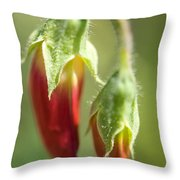 Red Pea Buds Throw Pillow