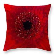 Red Petal Macro 3 Throw Pillow